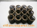 valves springs set